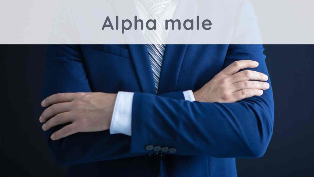 Alpha male: how to become an alpha man?